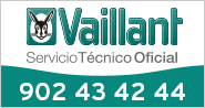SAT Vaillant 2020 abril