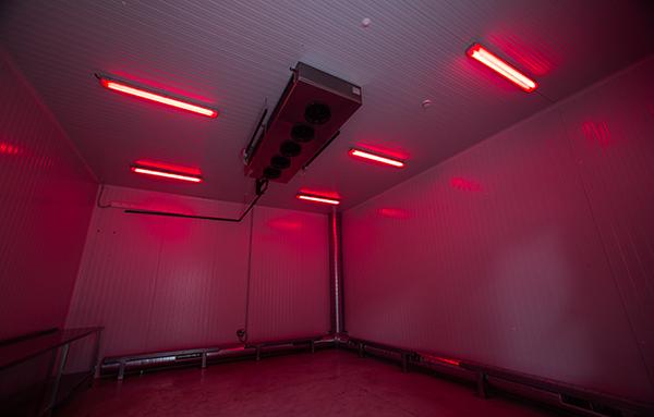 Instalación de cámaras frigoríficas en una biofábrica en Rami Frío