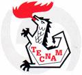 Logo Tecnam