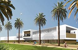Edificio rodeado de palmeras